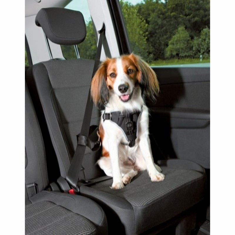 Trixie Dog Protect bil-sele S-M